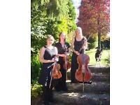 Classical, contemporary and traditional string trio (quartet)
