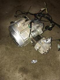 Kazuma meerkat 50cc engine