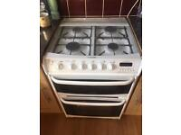 Cannon duel gas cooker