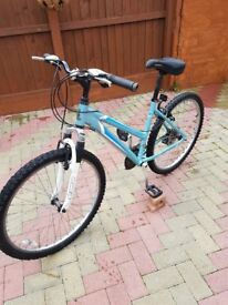 RALEIGH MOUNTAIN BIKE FRONT SUSPENSION