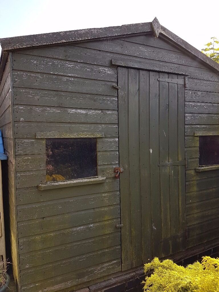 sturdy garden shed two front windows 8x6