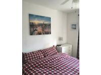 Double room in lovely house (with log fire)