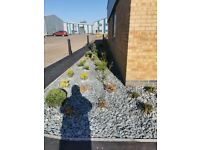 slate Chipping, Garden aggregate, landscaping, Ponds & Waterfalls paths, decorative slate