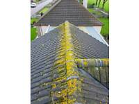 Roof,gutter patio and decking cleaning services