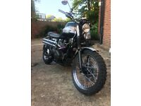 Triumph Scrambler for sale: 2008 8700 miles