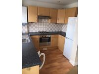 3 bed semi-detached house to rent available now
