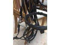 Brown bridles one black three bits