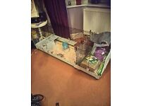 Guinea pig/rabbit x-large cage with extension