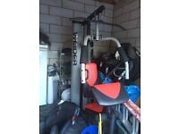 Multi Gym and Olympic weight bench