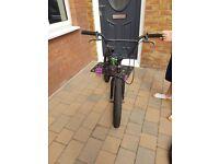 Boys Haro BMX Bike
