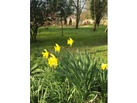 Full time live in housekeeper for country home in Warwickshire
