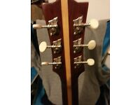 Eko ranger acoustic guitar