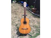 Spanish Classical Guitar.