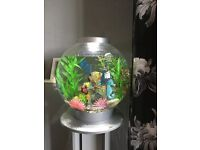 Biorb fish tank 30ltre and accesories