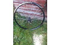 Bike wheel 26 single speed