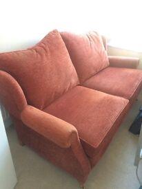 Burned orange sofa victorian style elegant