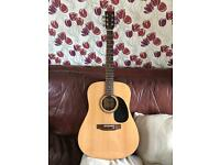 Encore acoustic guitar w255 model