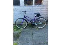 Ladies mountain bike (RALEIGH)