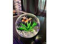 Aquarium goldfish rare heavy paperweight