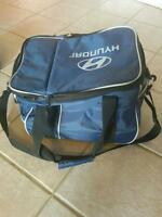Insulated lunch bag/picnic cooler