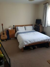 Double room to rent in Oxford (Hollow Way area)- 31st Aug