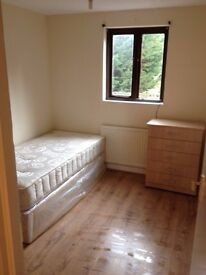 **SPACIOUS SINGLE ROOM IN CHISWICK/SOUTH ACTON**