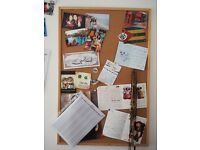 Pinboard and Second Whiteboard