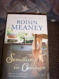 Something in Common by Roisin Meaney (Paperback, 2013)