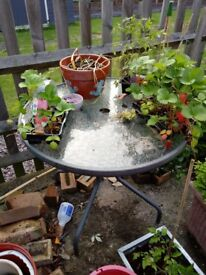 Glass topped garden table
