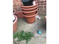 Plant pots. All sizes