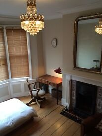 lovely single room in vegetarian Kemp Town house share