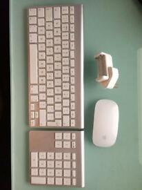 Apple keyboard, keypad and Magic Mouse