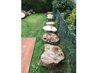 hornbeam logs