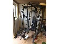 Multi gym with a smiths machine
