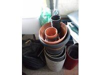 plant pots.FREE see pics