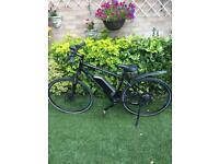 Electric Bike Ebike Carerra crossfire E