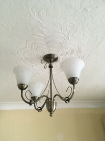 Pair of Ceiling Lights with White Frosted Glass Shades
