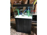 100l fish tank v g c full set up with filter heater light stand lid sand ornament pump all work more