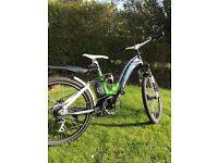 Longwise ladies 36v electric bike