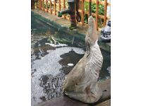 Solid stone large heron water fountain