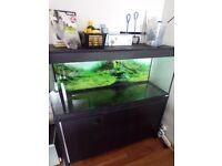 fish tank FLUVAL ROMA 240 AQUARIUM 4FT