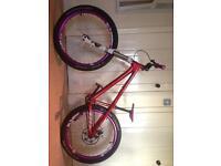 Dirt bike Dartmoor 26player jump bike