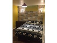 Nice double room available in newly renovated flat