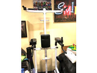 Image Pro II 3 in 1, Pull up Bar, Dip Station & Ab Station