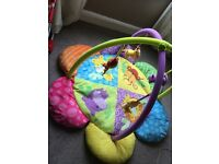 Baby Moses basket ,bath chair & play gym