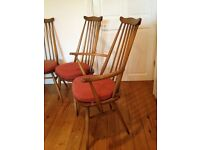 Set of 6 Ercol chairs, including 2 carvers and cushions