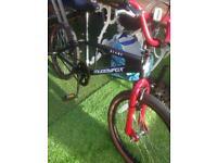 Muddyfox Desmond BMX