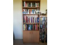 Tall bookcase with lower cupboard