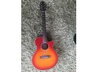 Electro-Acoustic Guitar - Takamine G-series