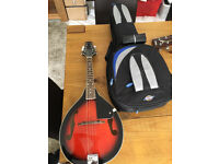 Stagg Mandolin and Carry Case, perfect condition, never used.